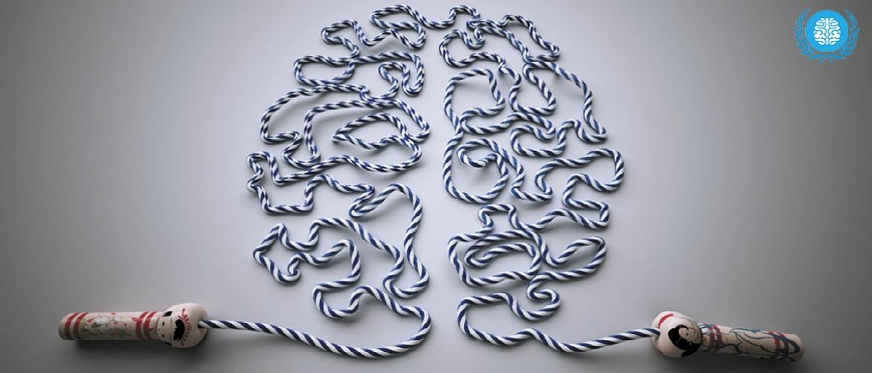 Серое вещество мозга