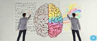 правое полушарие головного мозга
