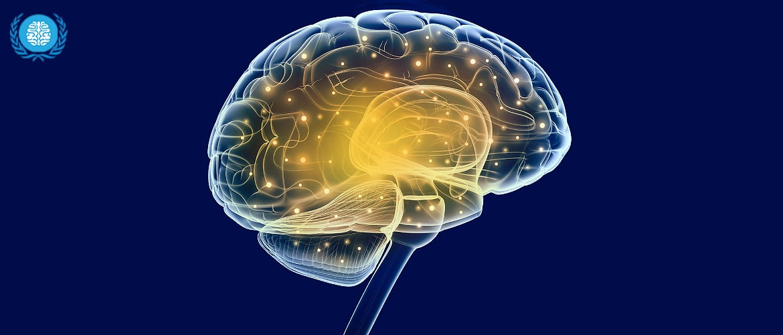 Глиозно атрофические изменения головного мозга