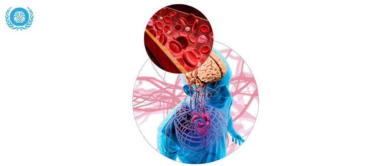Спазм сосудов головы и шеи: симптомы заболеваний, лечение